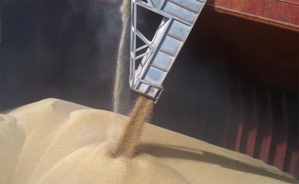 Экспорт зерна через порты Кубани в I квартале 2014 года вырос почти в 5 раз