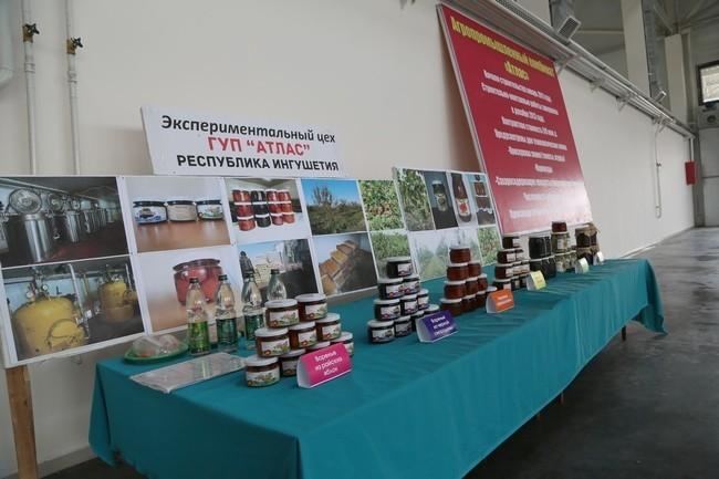 В Ингушетии построено новое предприятие по переработке и консервированию плодоовощной продукции