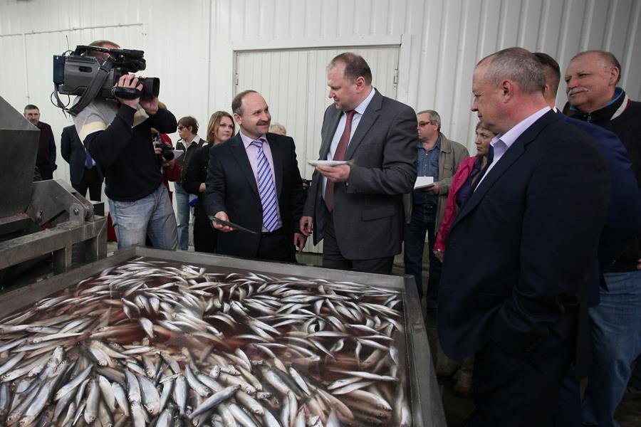 rybnoe_proizvodstvo