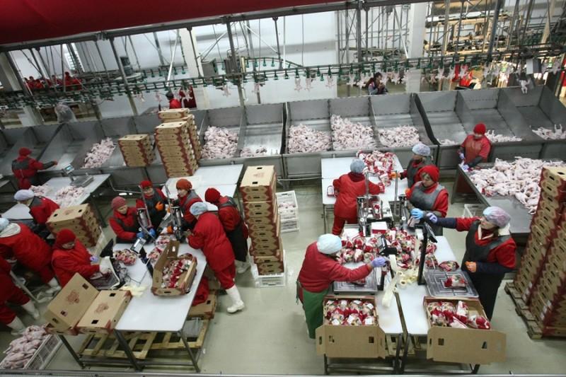 Мордовии состоялось открытие комплекса по переработке мяса птицы