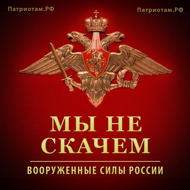 Мы не скачем - Вооруженные силы России