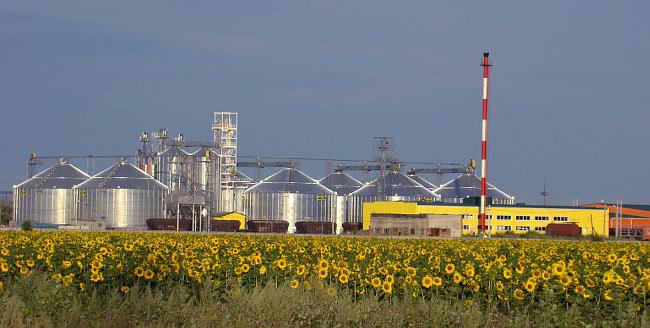 В Омской области состоялся запуск завода по переработке масличных культур