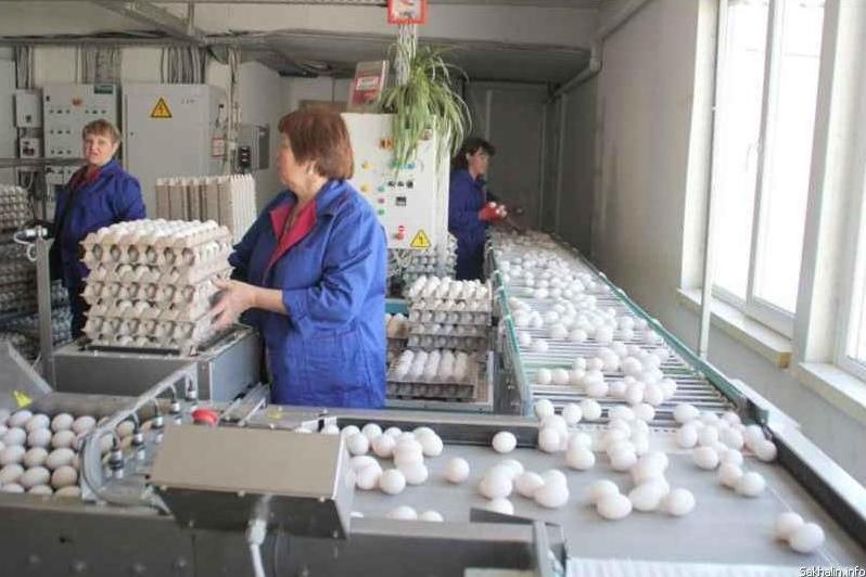 В Южно-Сахалинске открыт корпус птицефабрики