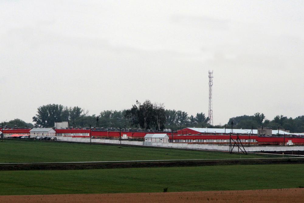 В Липецкой области после реконструкции открылся птицеводческий комплекс