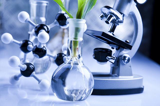В Алтайском крае начал работать научный центр Российской академии наук в области биотехнологий