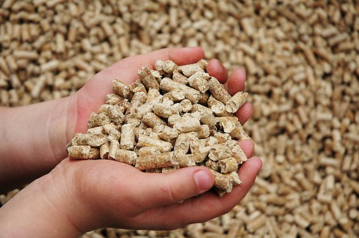 Состоялось открытие нового завода комбикормов в Татарстане