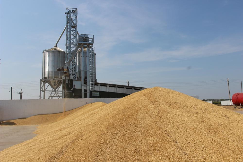 В Пензенской области введен в эксплуатацию сушильный комплекс мощностью 60 тонн зерна в час