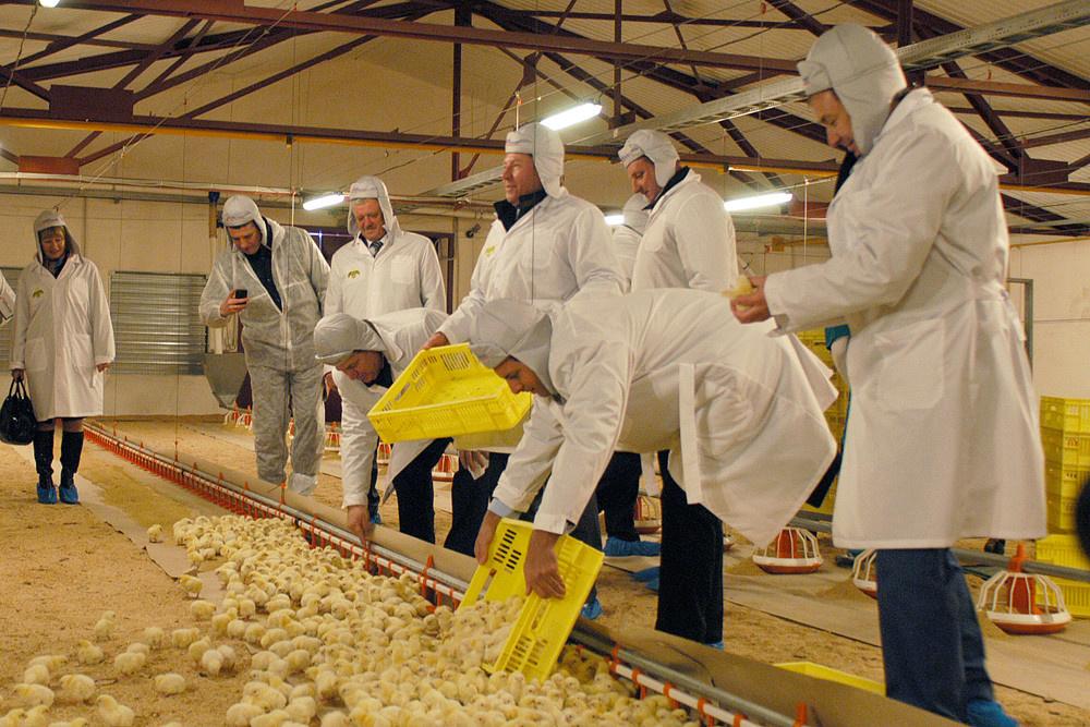Группа «Черкизово» открыла новую птицеводческую площадку в Липецкой области