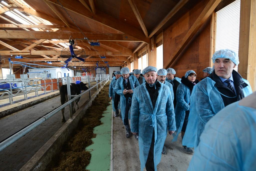Первая в крае молочная роботизированная ферма открылась в Приморье