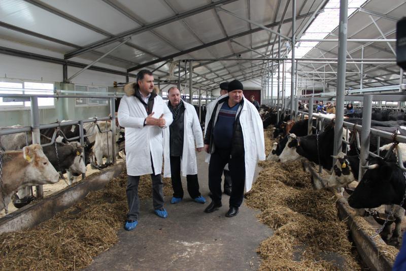 В Рязанской области открылся новый животноводческий комплекс