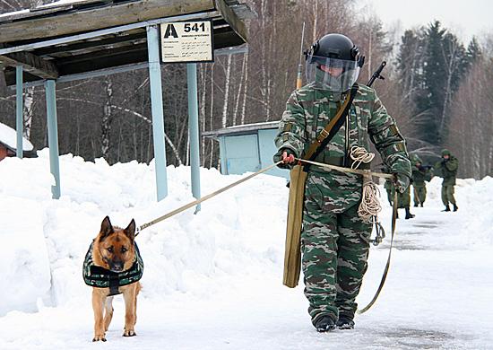 На вооружение инженерного полка Черноморского флота поступили новейшие средства инженерного вооружения