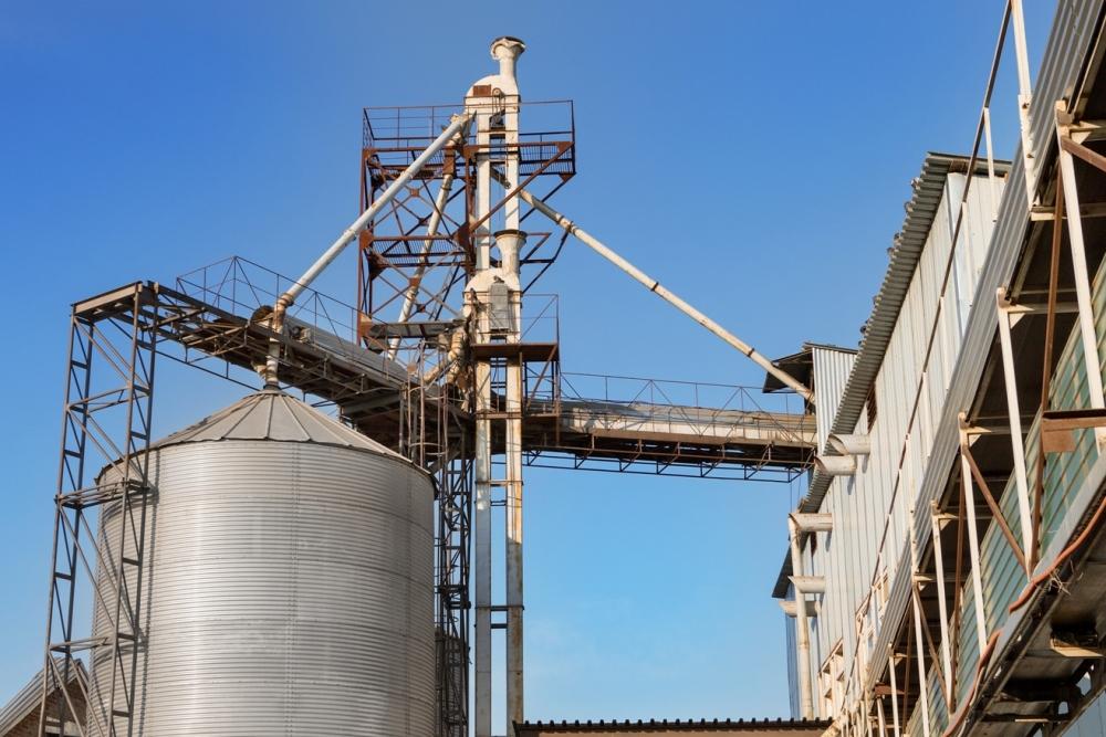 Зерноперерабатывающее предприятие края запустило комплекс мощностью 2 тысячи тонн в месяц