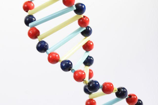 Новосибирские ученые открыли новый класс химических соединений