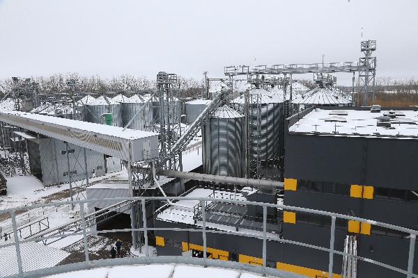 На востоке Калининградской области запущен новый рапсовый завод