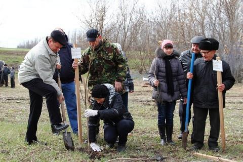 Крупное производство грецких орехов и фундука запущено в Валуйском районе Белгородской области