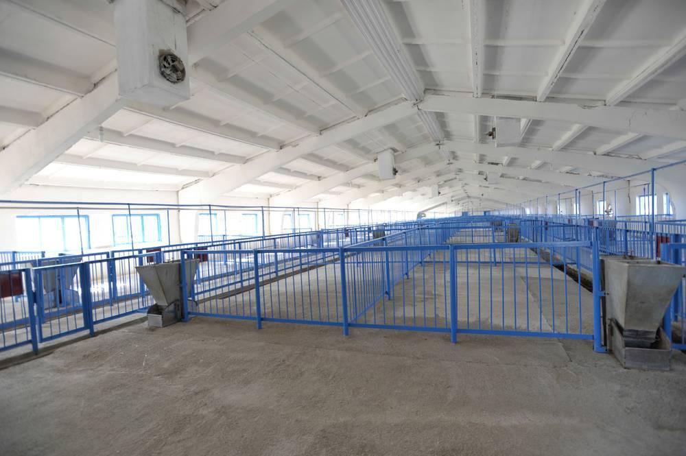 На Ставрополье открылся новый животноводческий комплекс