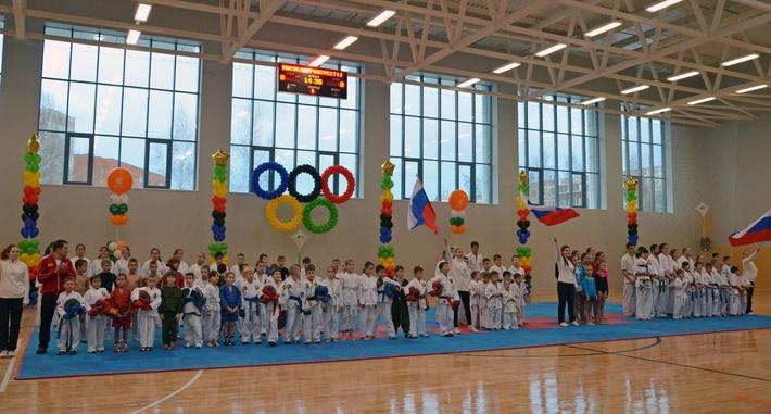 Новый физкультурно-оздоровительный комплекс открыт в Домодедово Московской области