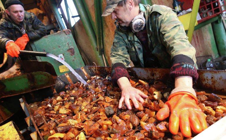 Калининградский янтарный комбинат за 2015 год увеличил объемы производства на 25%, а выручку на 31%