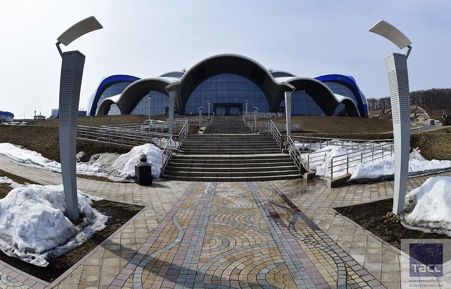 Океанариум на острове Русском откроется в июне 2016 года 1