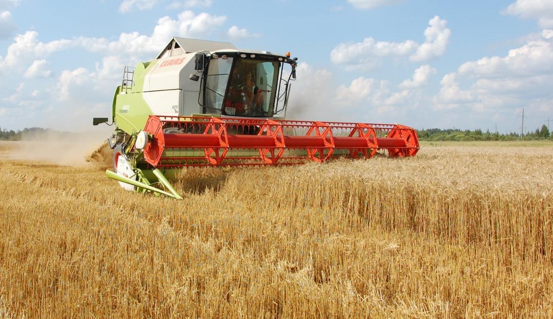 Сельхозпроизводители Челябинской области получили субсидии в 25 млн. руб