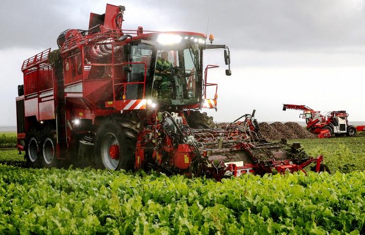 В России за 10 лет объем производства сельхозпродукции вырос на 40%
