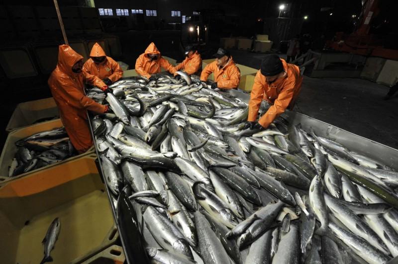 Экспорт рыбной продукции из России за 2 месяца 2016 года вырос на 15,6% - до 291,2 тыс. тонн