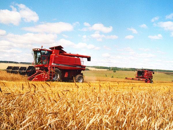 Экспорт сельхозпродукции из России за 10 лет вырос более чем в 6 раз
