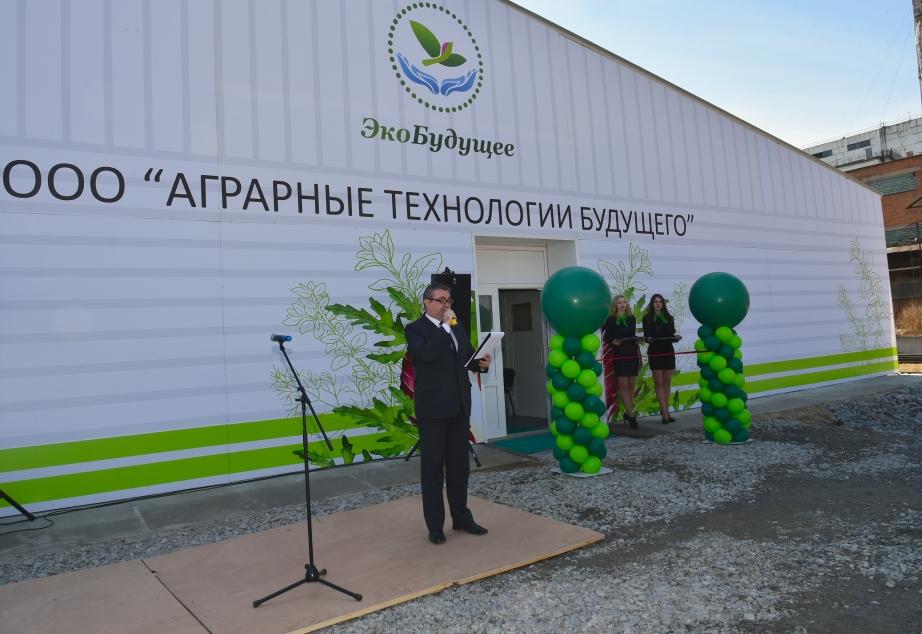 В Хабаровском крае открыт завод по выращиванию зелени 2