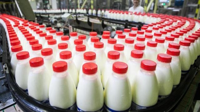 Объем экспорта российской молочной продукции увеличился на 29% по сравнению с прошлым годом