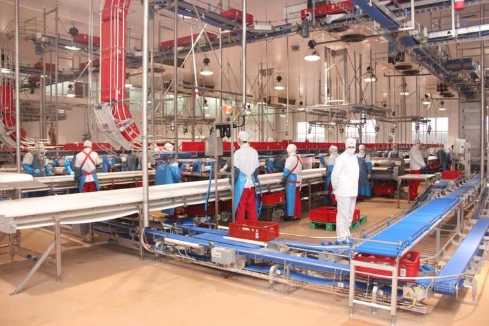 На новом мясоперерабатывающем заводе компании «ПРОМАГРО»