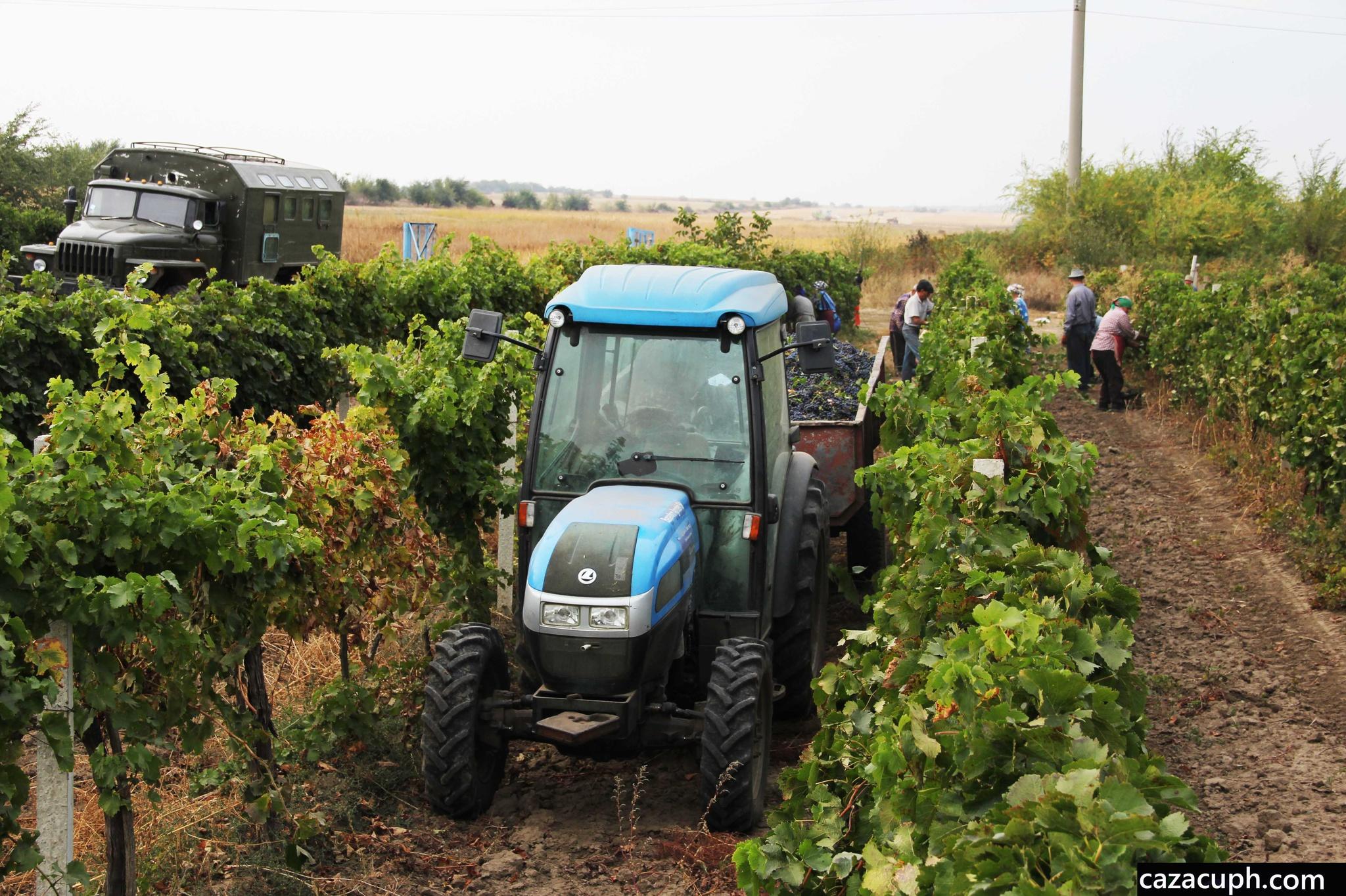 Концерн «Тракторные заводы» разработал тракторы для румынского рынка