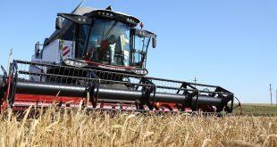 Установлен рекорд по сбору пшеницы в России — 66.8 млн тонн