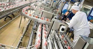 В Московской области открыл новую линию по производству сыра завод «Valio»