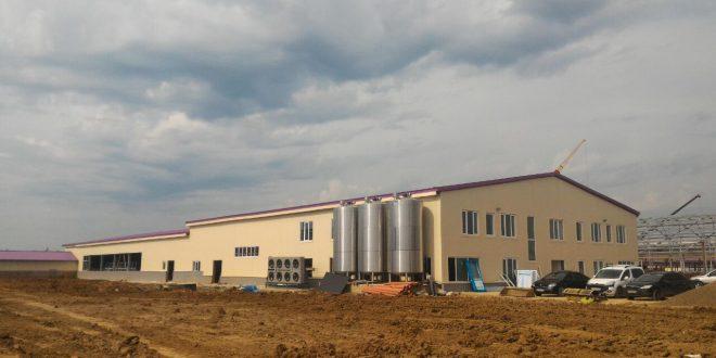 В Подмосковье запустили два новых молочных комплекса