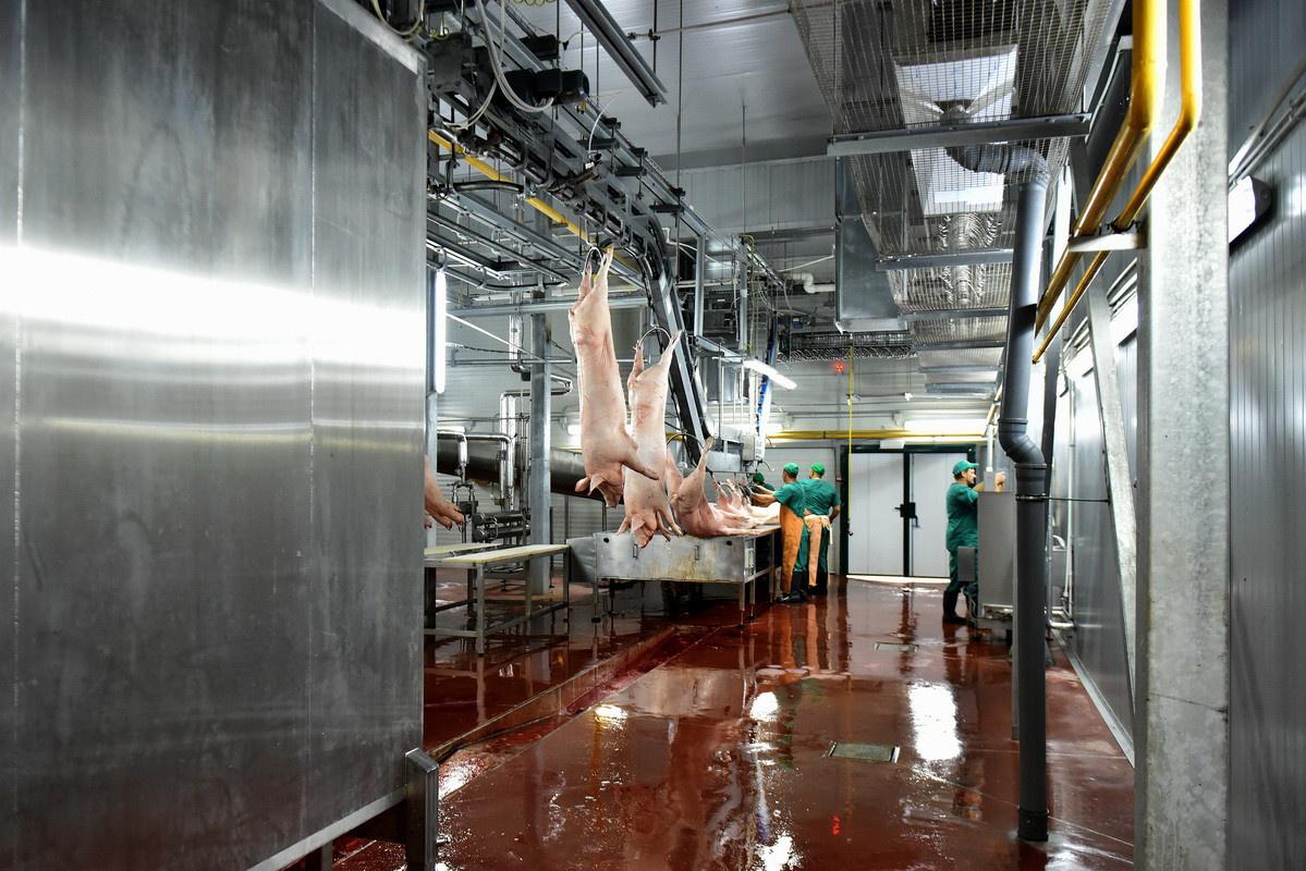 В Старом Осколе открыли новый мясоперерабатывающего завод